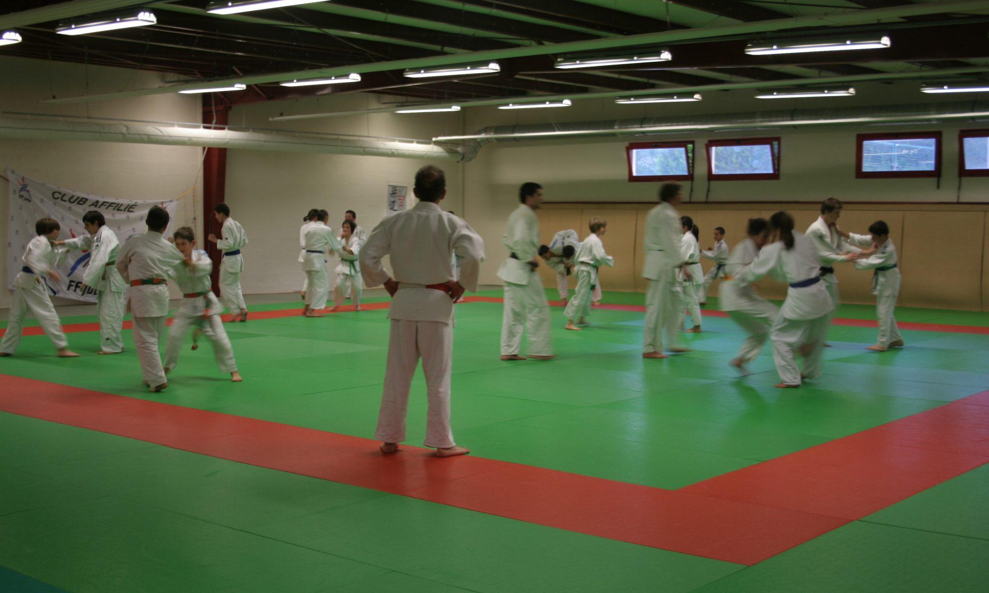 Cours judo Séné